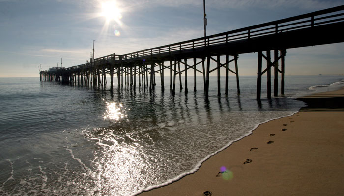 Newport Pier Art Walk