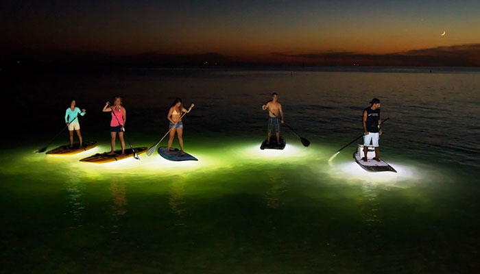Sup Glow Night Tours