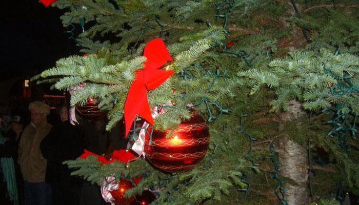 Balboa Island Christmas Tree Lighting Ceremony