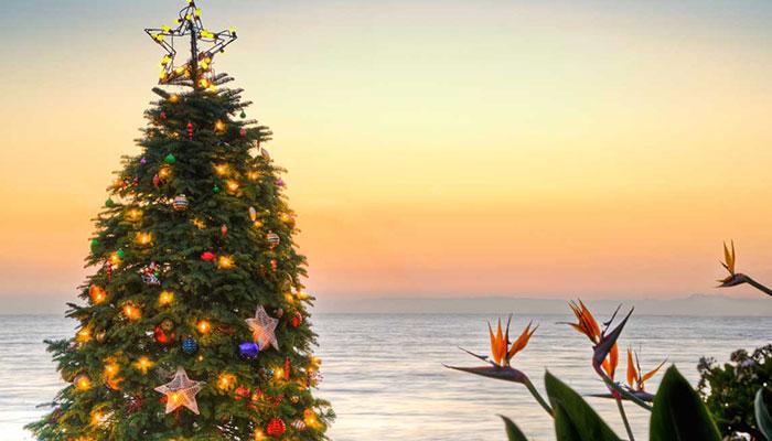 Sunset Park Christmas Lights