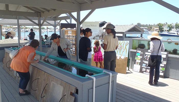 Community Day at Back Bay Science Center- Sundays