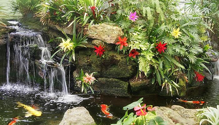 Sherman Library and Gardens | Newport Beach Botanical Retreat