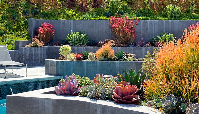 Lovely Rogeru0027s Gardens