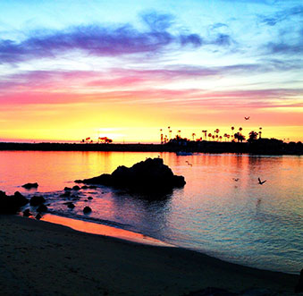 Stunning Summer Sunsets
