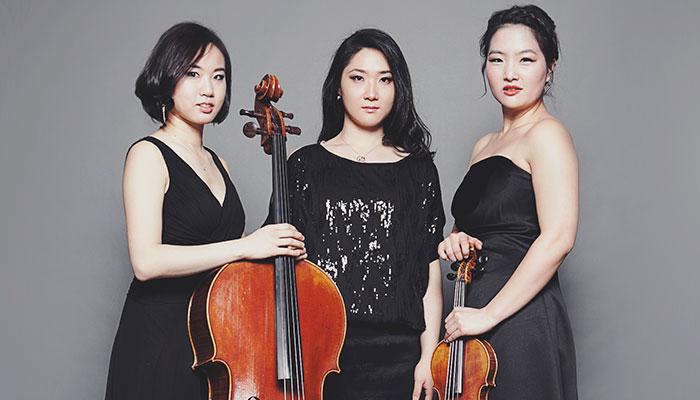 Allant Trio Performance