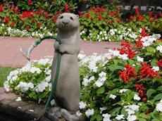 Sherman Gardens Otter statue