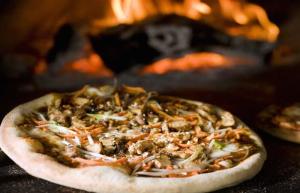 Pizza Nova Oven