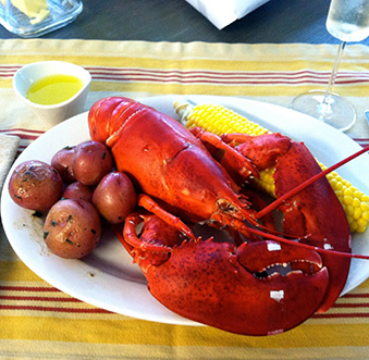 Got Lobster?