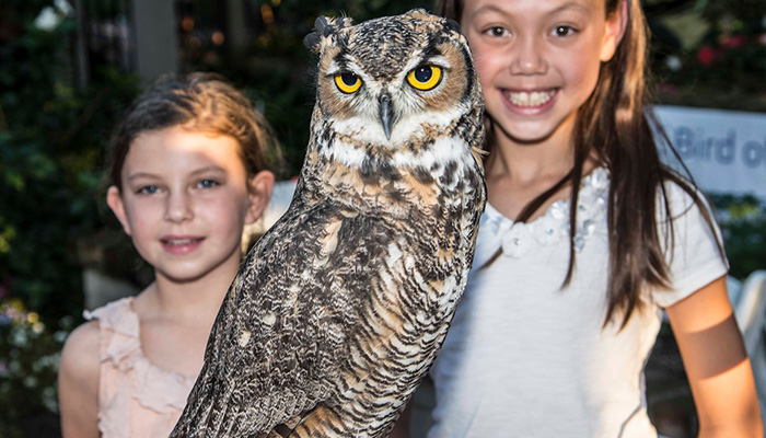 Creatures of the Night at Sherman Library & Gardens