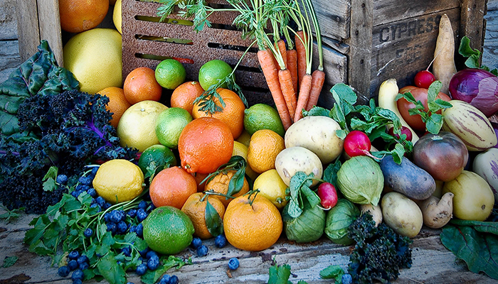 My Edible Garden with Steve Hampson Roger's Gardens