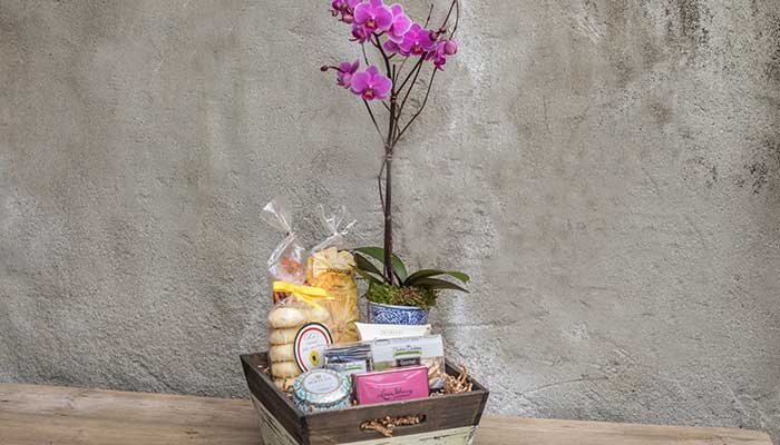 Mother's Day Gift Baskets Workshop Roger's Gardens