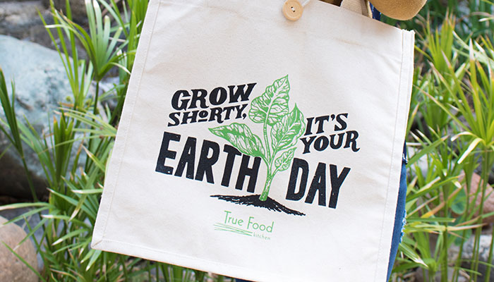 EARTH MONTH TO-GO CAMPAIGN at True Food
