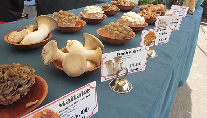 Corona del Mar Certified Farmer's Market