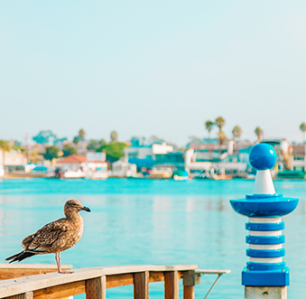 Why Travel Matters to Newport Beach