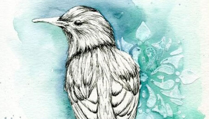 Watercolor Class Birds with Erna at Sherman Library & Gardens