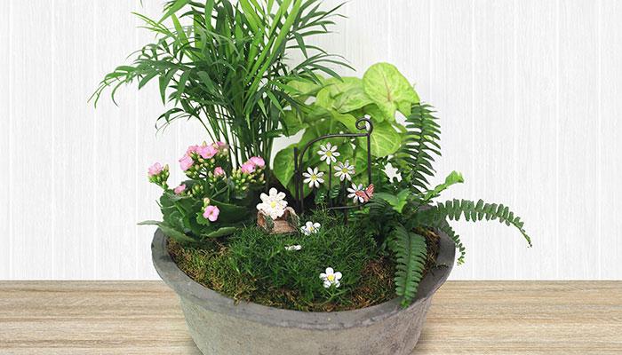 Spring Miniature Garden Workshop with Shelley Burton
