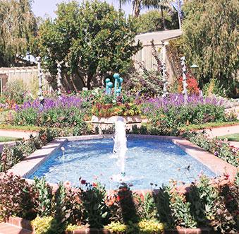 3 Lush Gardens to Explore in Newport Beach